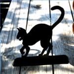 halloween-black-cat-standup