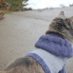 knitted-cat-hoodie-pattern