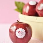 Valentine Fruit Stickers