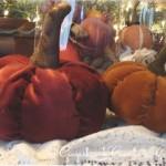 Velvet Pumpkin Sewing Pattern