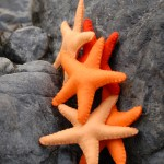 Free Starfish Felt Pattern