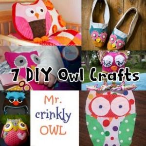 DiY Owl Crafts