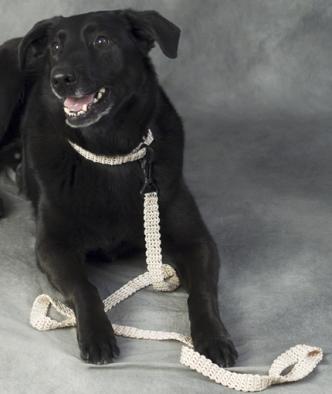 Crochet Dog Leash and Collar Pattern