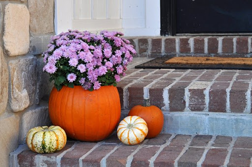 DIY Pumpkin Planter