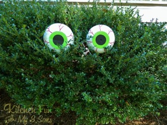 Spooky Bush Eyes Halloween Craft