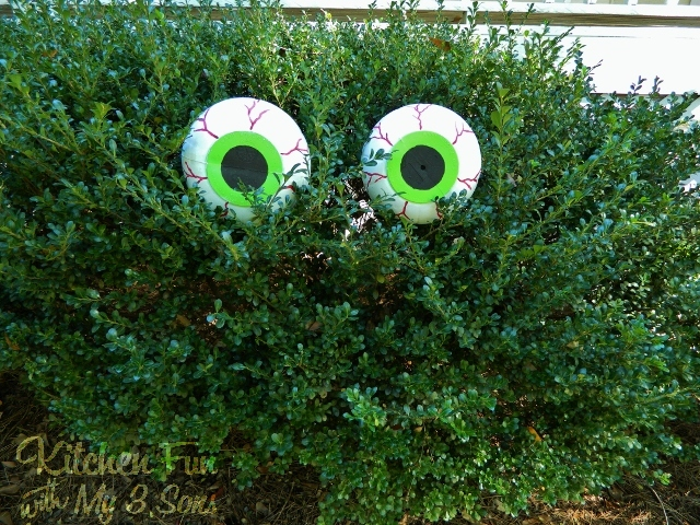 Spooky Bush Eyes Halloween Craft
