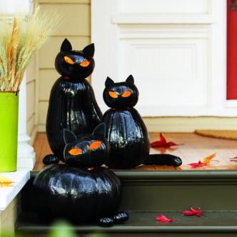 Black Cat o'Lanterns