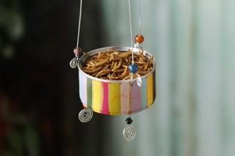 DIY Recycled Cans Bluebird Feeder
