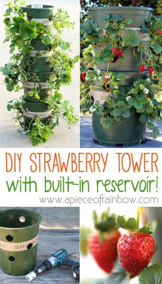 DIY Strawberry Tower