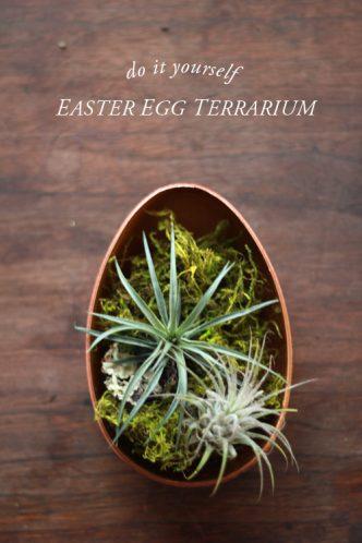 DIY Easter Egg Terrarium