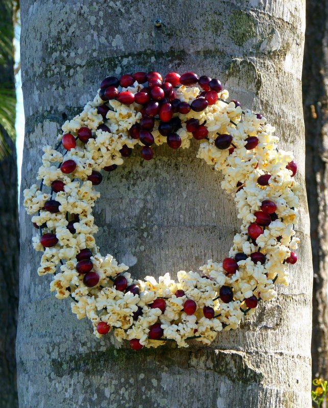 Popcorn Cranberry Wreath for Birds