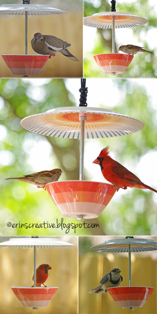DIY Plate and Bowl Bird Feeder