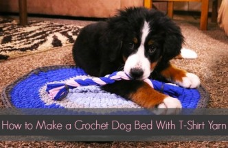 T-Shirt Yarn Dog Rug and Chew Toy Free Crochet Pattern