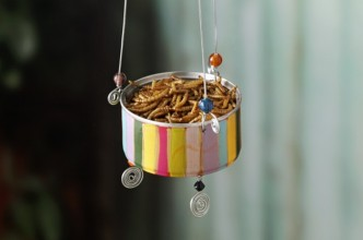 DIY Recycled Cans Bluebird Feeder