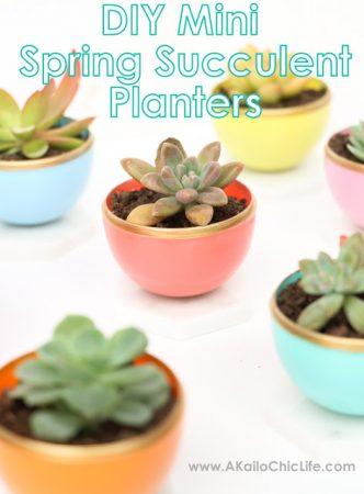 DIY Mini Spring Succulent Planters