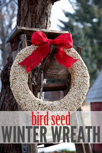 Bird Seed Winter Wreath Tutorial